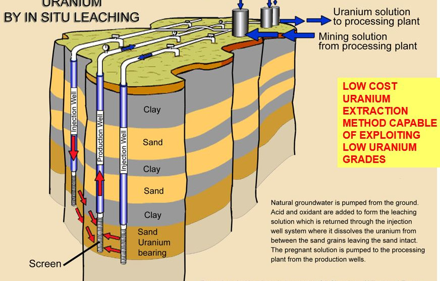 In situ uranium recovery