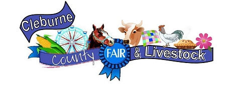 FAIR%20LOGO_edited.jpg