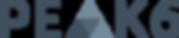 p6-logo_gray - Tom Sukboontip.png