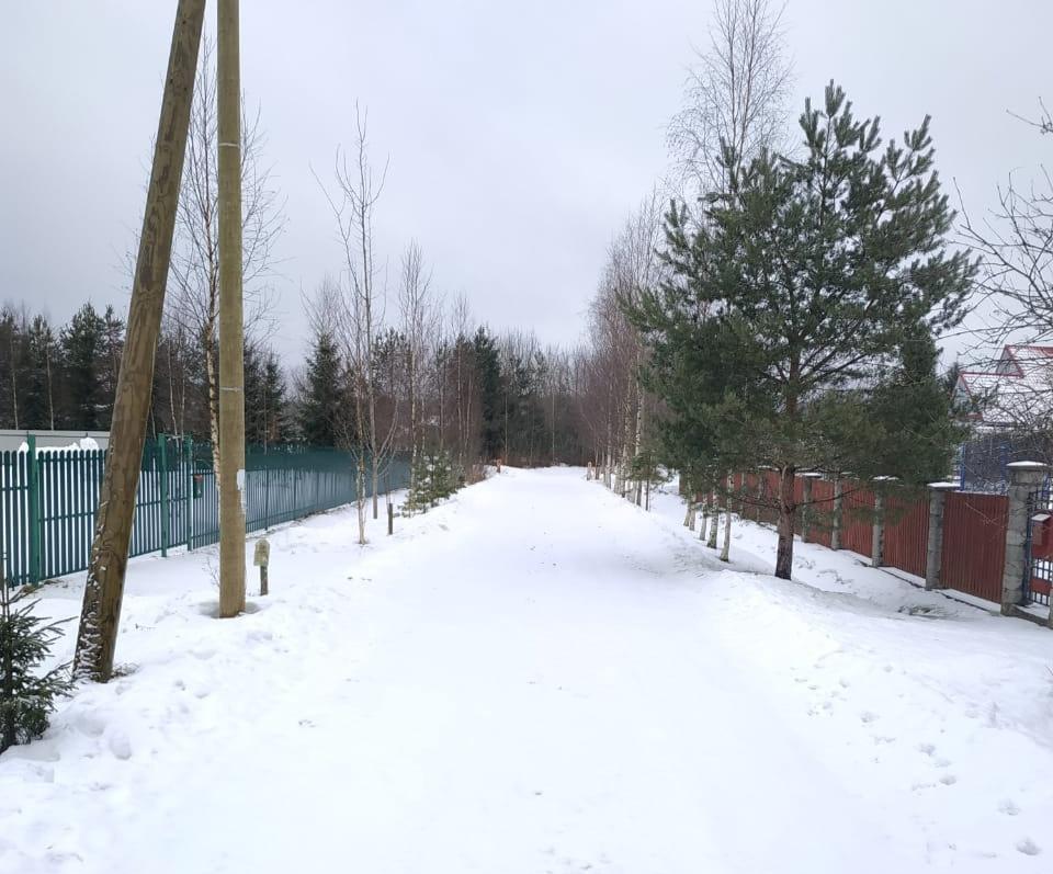 Дорога в деревне Борисово, которую могут расширить