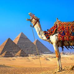 Как выживает выездной туризм