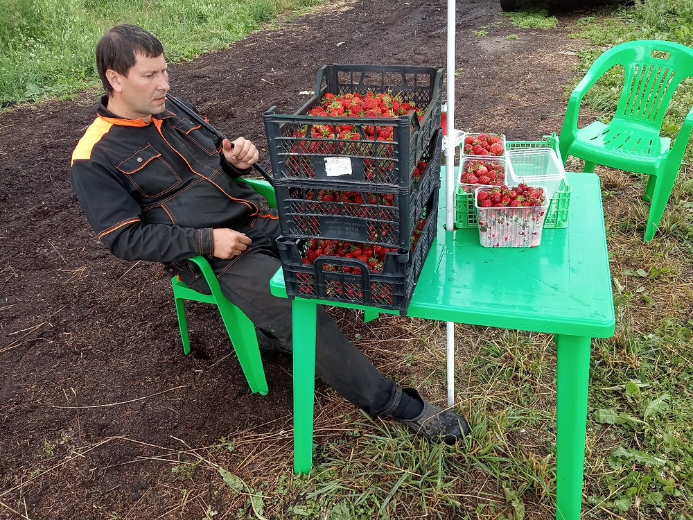 Михаил Шконда, глава Ассоциации фермеров Ленинградской области и Санкт-Петербурга со своей продукцией
