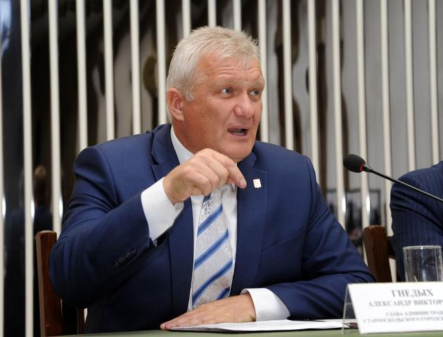 Александр Гнедых, глава УФНС по Петербургу
