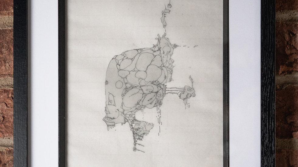 """""""Anatomy Of Arcus"""""""