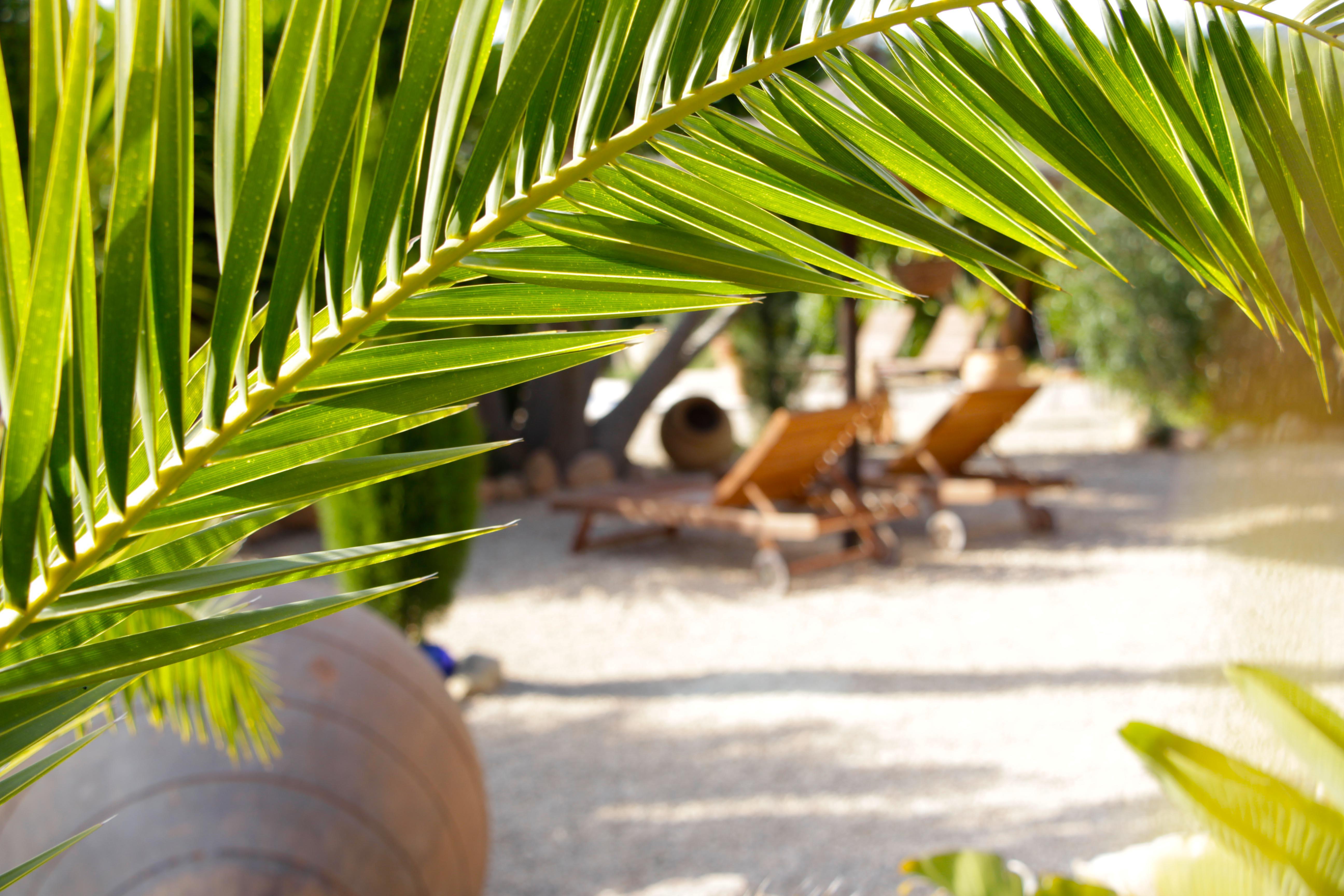 Ferienhausvermietung auf Mallorca