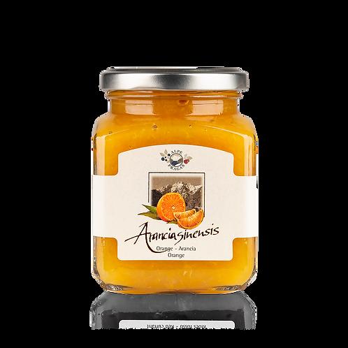 Alpe Pragas - composta di frutta Arancia 335g