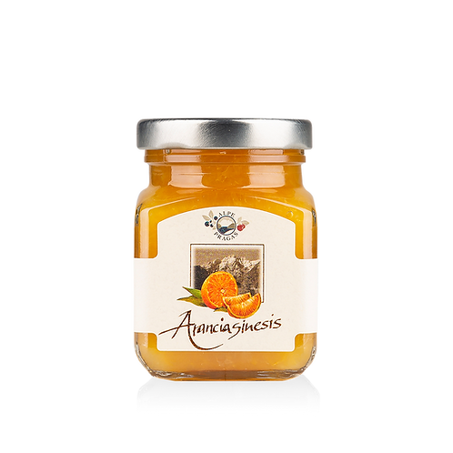 Alpe Pragas - composta di frutta Arancia 110 g.