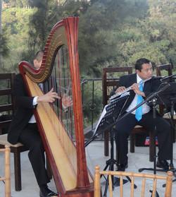 Arpa clásica y flauta traversa