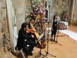 Arpa clásica, violín y cantante