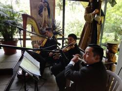 Arpa clásica, violín y flauta