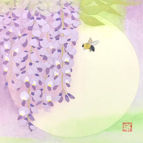 藤とクマバチs.jpg
