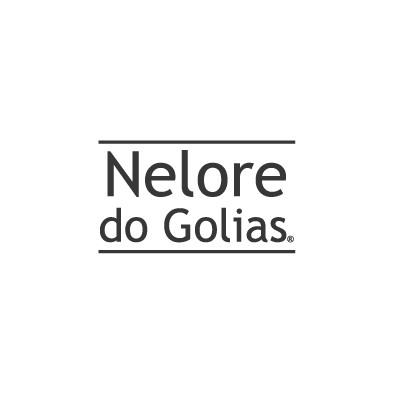 C_Nelore_do_Golias.jpg