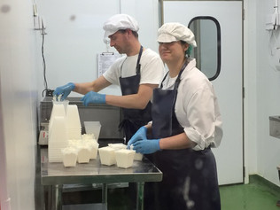 How do you learn to make cheese?