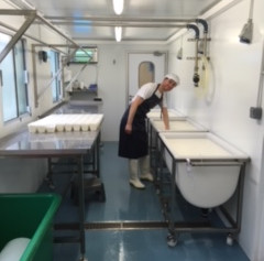 Life in our new cheese room