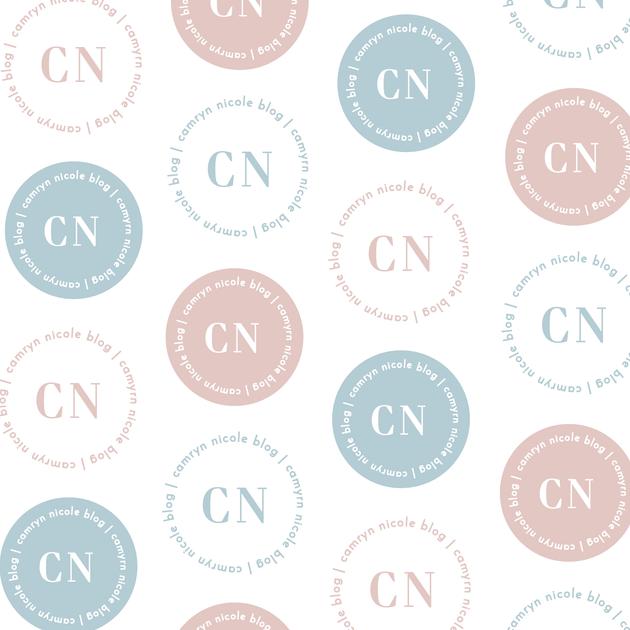 Camryn Nicole Blog Rebrand