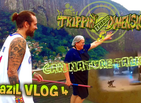 - Can nature talk? - | Brazil VLOG 4 | Trippin' through Dimensions (german edition)