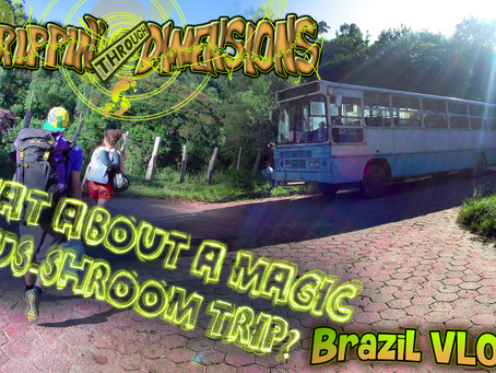 - What about our Bus-Shroom trip? - | Brazil VLOG 10 | Trippin' through Dimensions