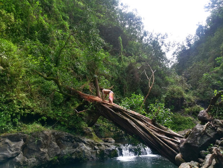 BALANCE | Exploring River Beds on Maui