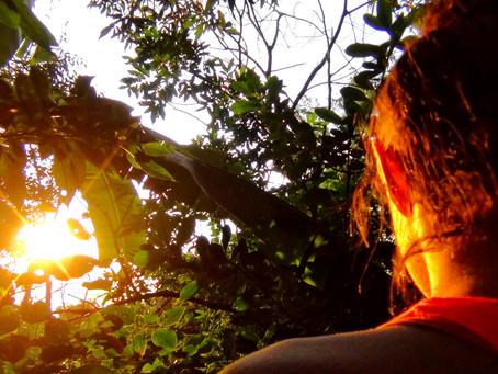 COLOR | Golden lightshower in Guaratiba
