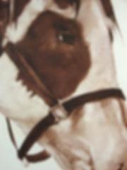 kirkhuff-homoerotic-scroll-detail web.jp