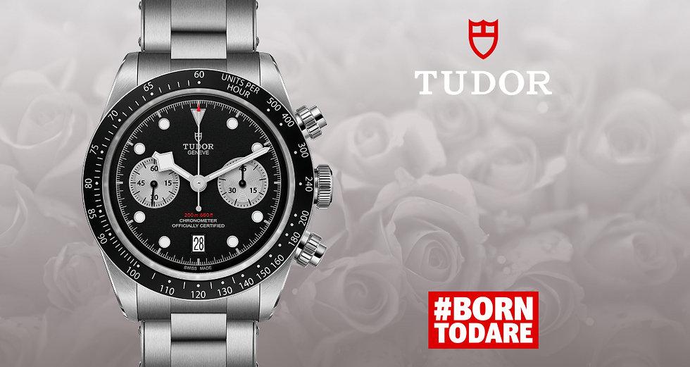 Tudor-banner (1).jpg