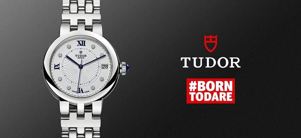 Tudor-banner.jpg