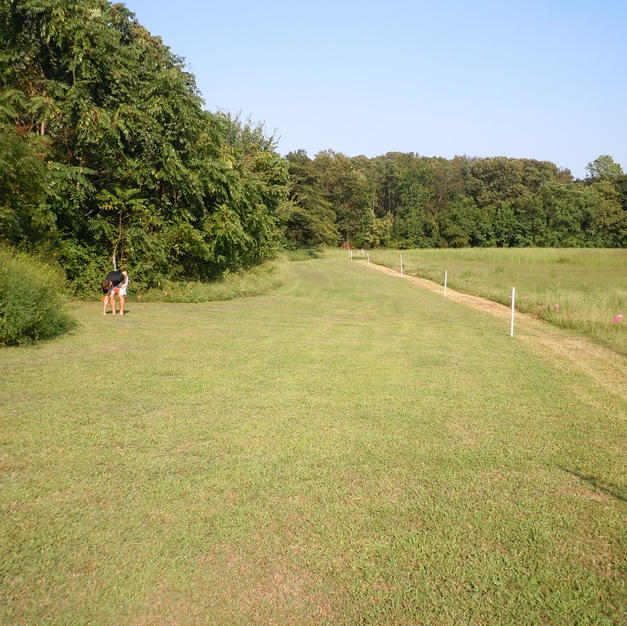 ~1,100M (Upper & Lower 5K Course)
