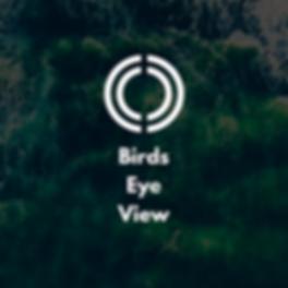 Birds Eye view 1k.png