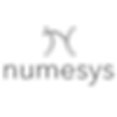 Numesys Logo.png