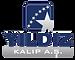 yildiz-kalip-freedomerp.png