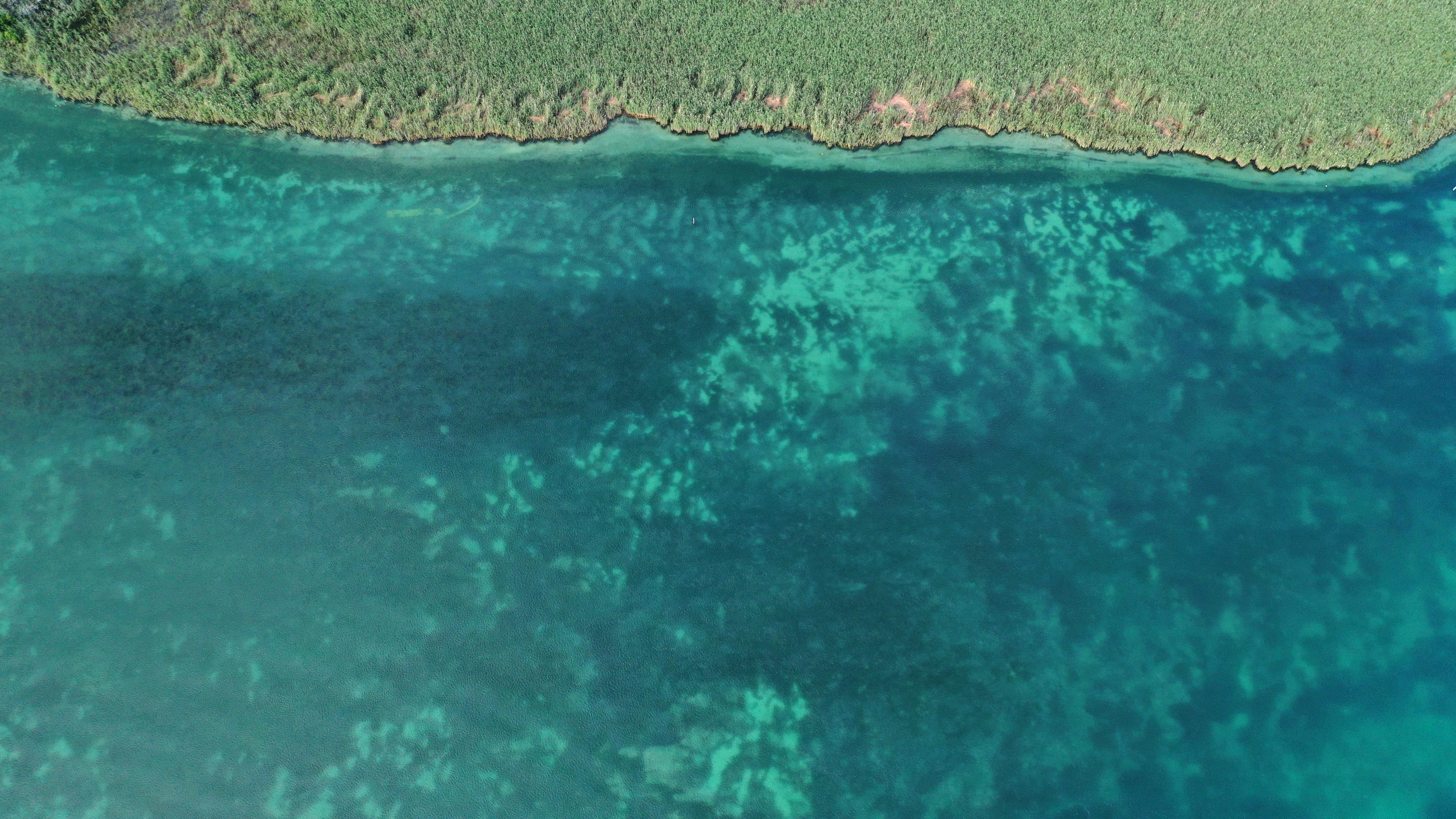 Zwischen Untersee und Bodensee