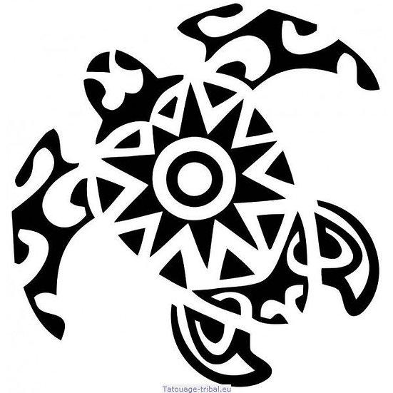 12 - Tortue polynésienne