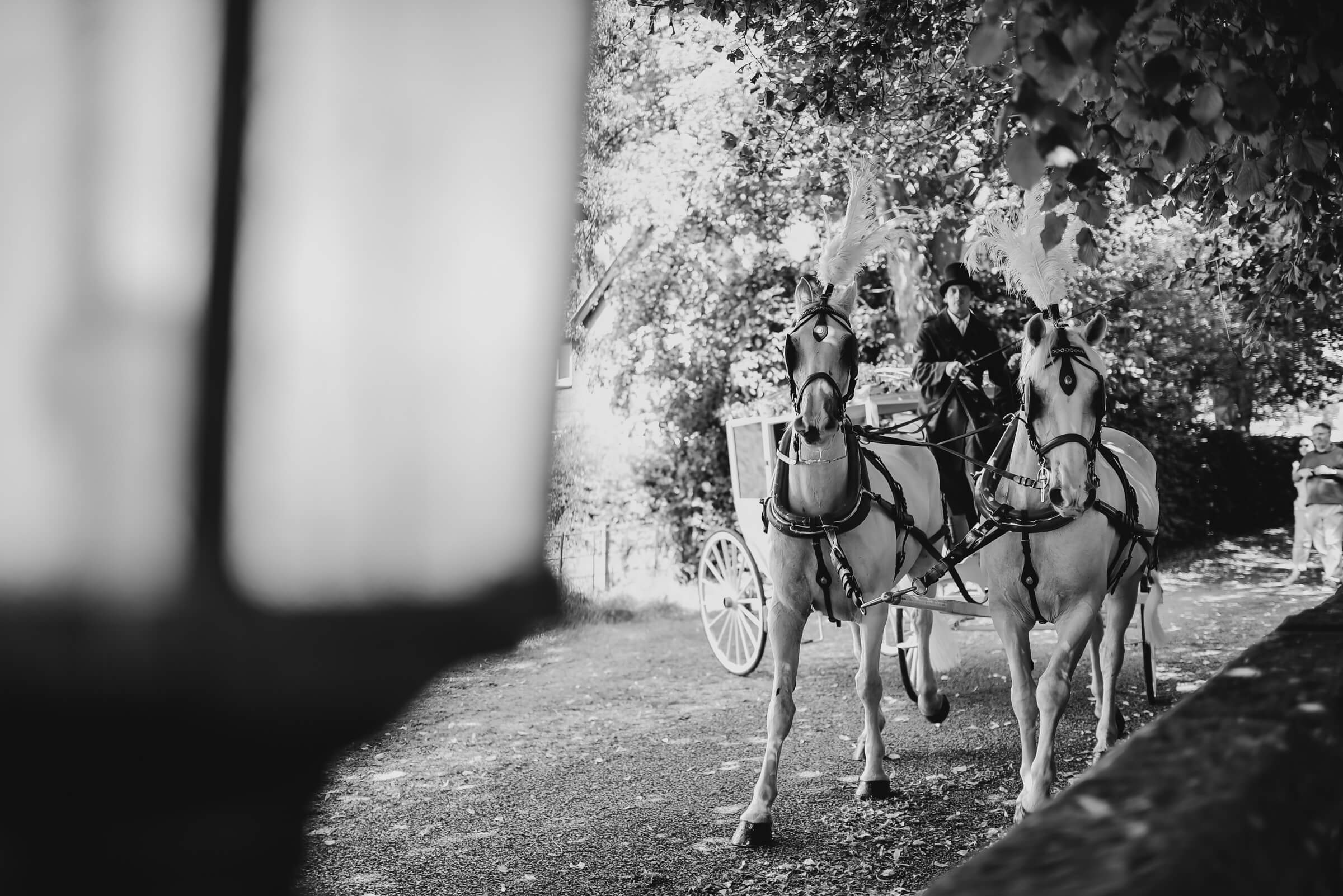 bride arriving in horse drawn carriage