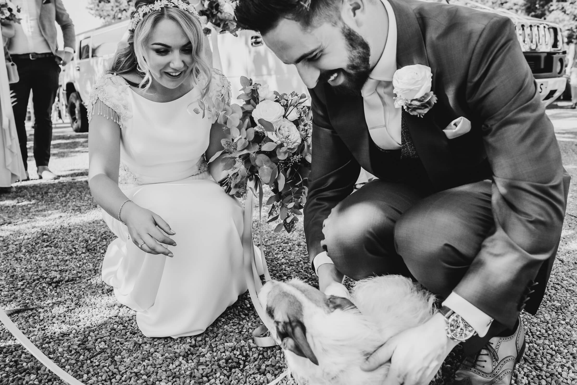 bride and groom stroking their dog at wedding venue