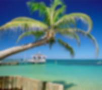 Passeios em Praia  do Forte, Emytour Turismo, passeios, praia do forte, bahia, quadriciclos, minibuggys, mergulho, easy do forte, buggy, piscinas naturais, sapiranga, turismo, receptivo,  Passeios de buggy, castelo, reserva sapiranga