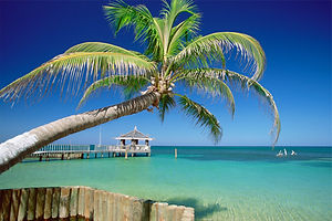 Tropisk ö