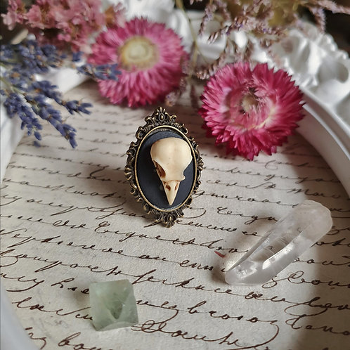 gothic victorian raven skull cameo ring witch