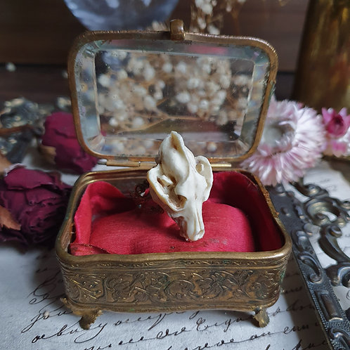 Wolf 3d resin skull on gothic lacy bronze ring
