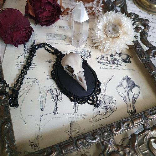 Collier pendentif noir camée crâne corbeau gothique