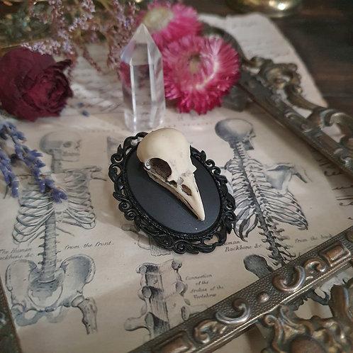 Broche noire sorcière crâne d'oiseau gothique