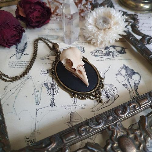 Collier camée crâne oiseau corbeau gothique sorcière