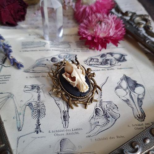 Broche gothique camée crane de loup bois de cerf bronze