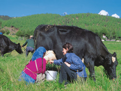 ¿Qué es el ecoturismo comunitario?