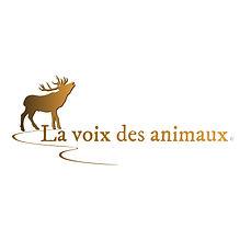 Logo ©️ .jpg