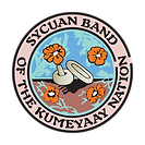 SycuanLogo Transparant Background.png