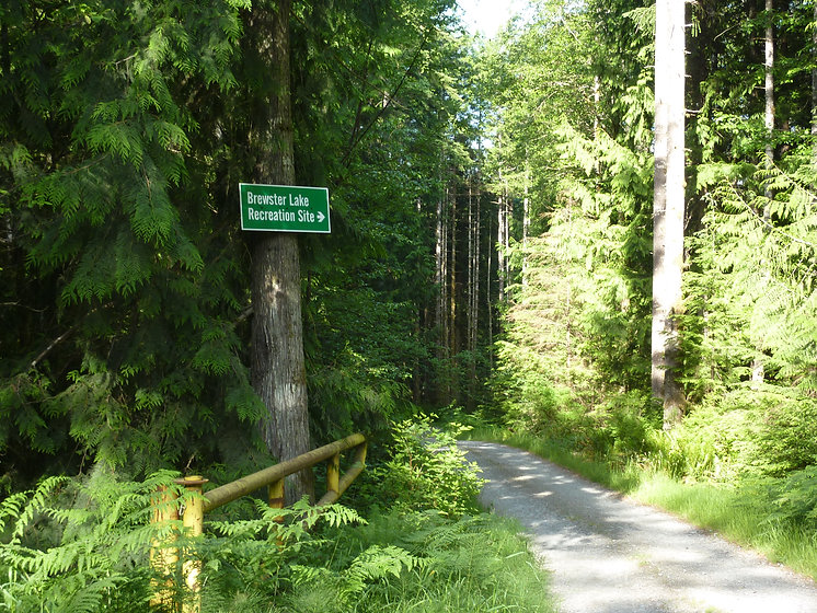 Brewster Lake Rec Camp | sign for turn-off access road | cycle touring Vancouver Island