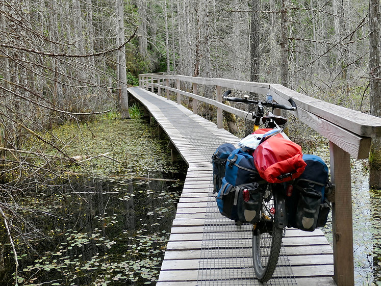 Wetlands trail into Smuggler Cove Provincial Camp, a fav, north of Hafmoon Bay