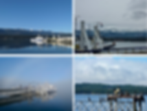 Buckley Bay Ferry Terminal | cycle touring Denman Island | cycle touring Hornby Island