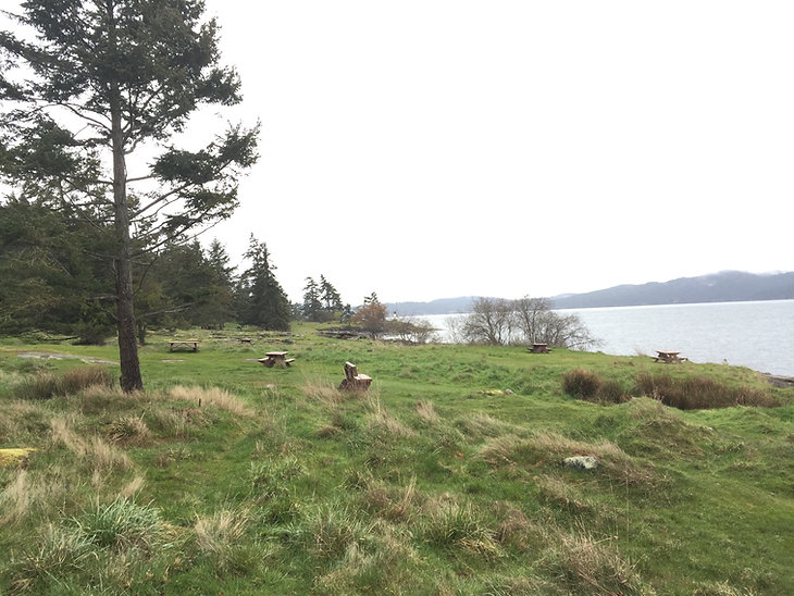 Seaside camping at Ruckle Park | cycling Saltspring Island | cycle touring south Gulf Islands