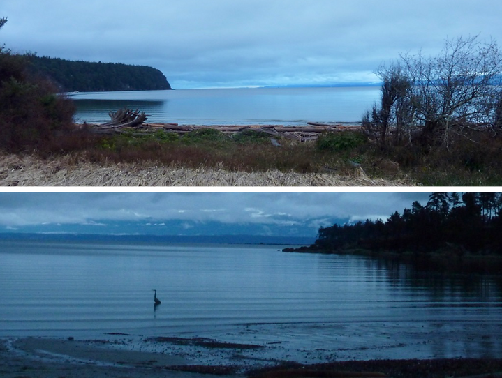 Tribune Bay | cycle touring Hornby Island